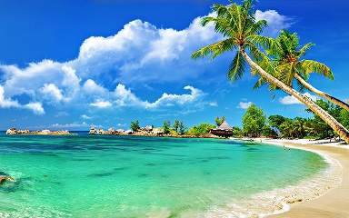 Breathtaking picture of tropical beach